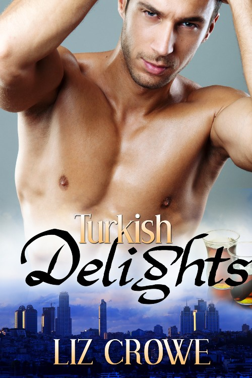 Turkish Delights book cover
